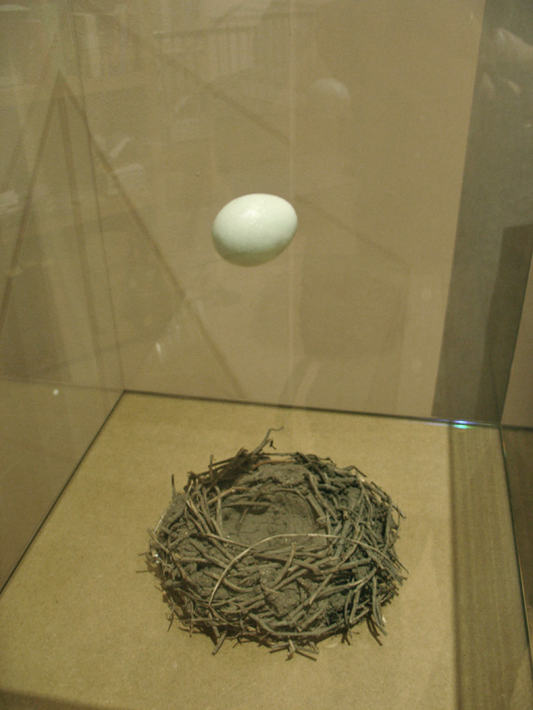 Egg and Nest, 2005