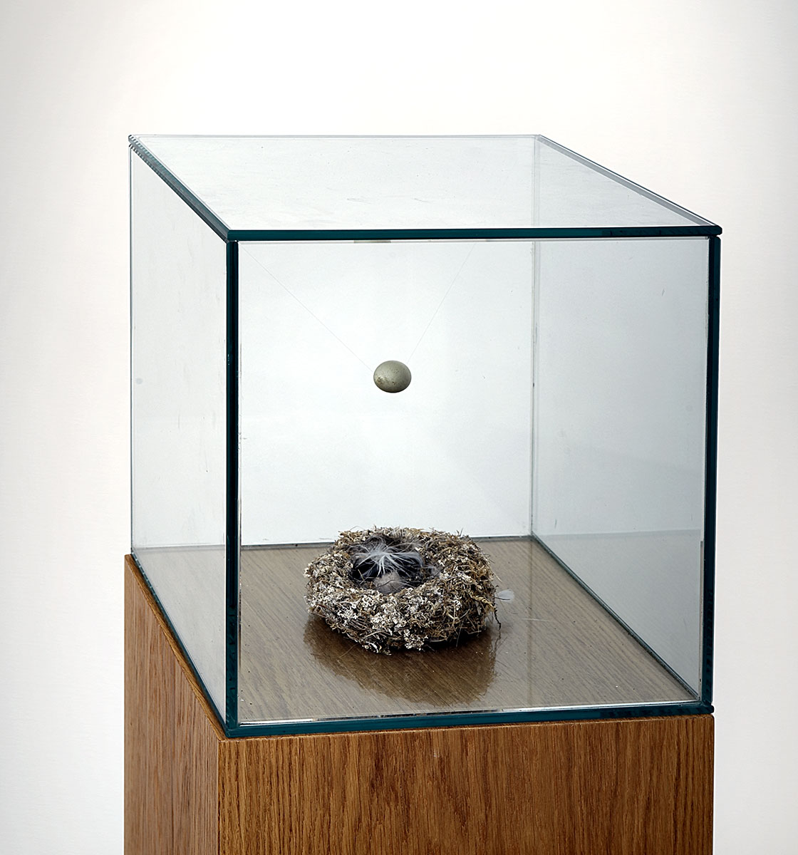 Bad Egg (Egg and Nest), 2009
